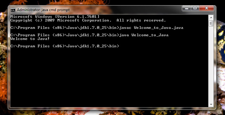 How To Use Command Prompt To Run A Simple Java Program | Justin