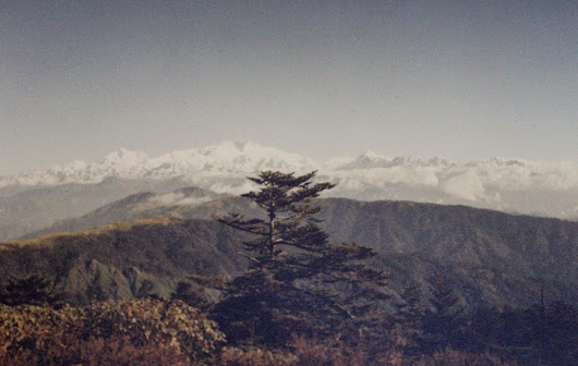 Trekking in Himalaya: Sandakphu. Memories from my first trek
