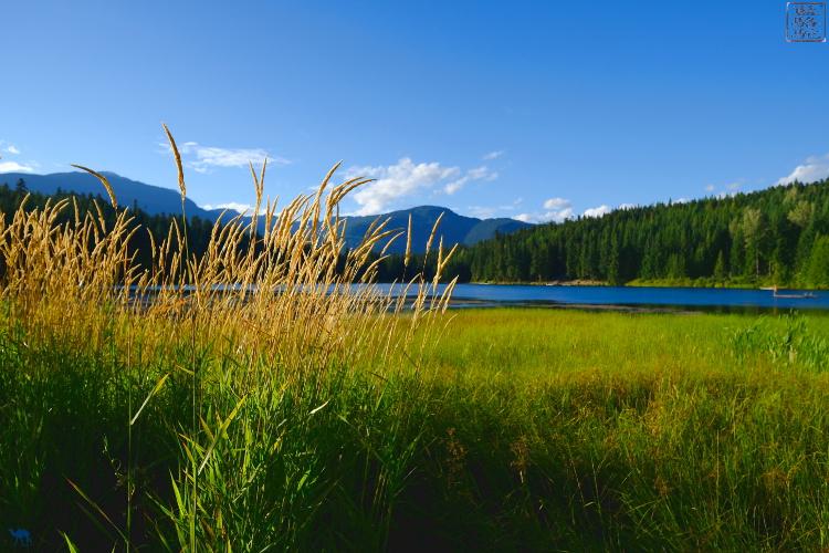 Le Chameau Bleu - Whistler Lost lake -Whistler Village - Canada - British Columbia