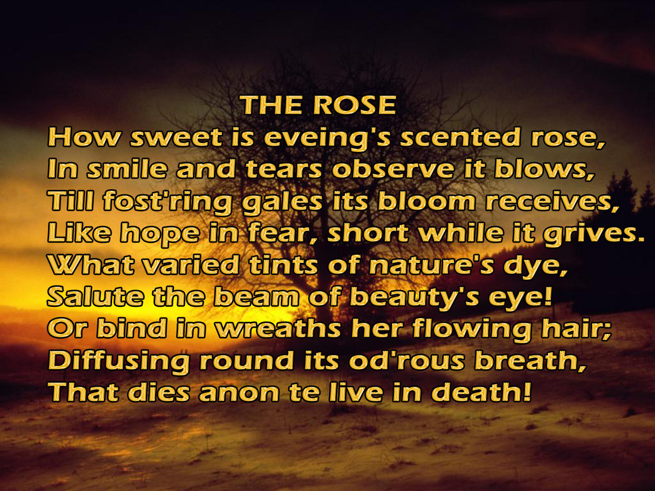 Short Good Poems With Hd Wallpapers Free Download Poetry