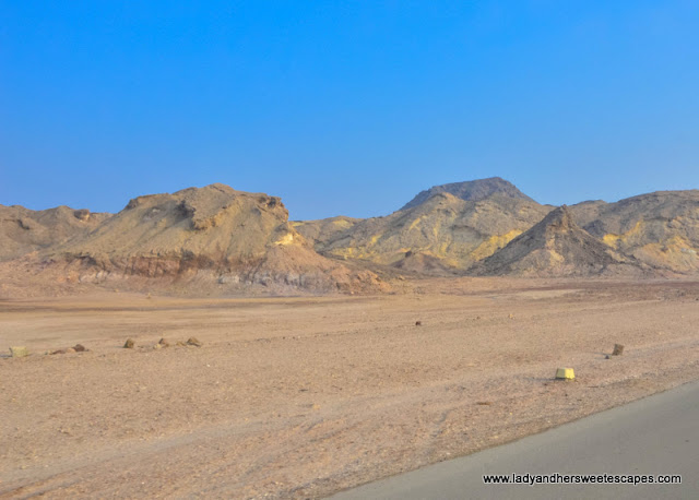 terrain in Sir Bani Yas island