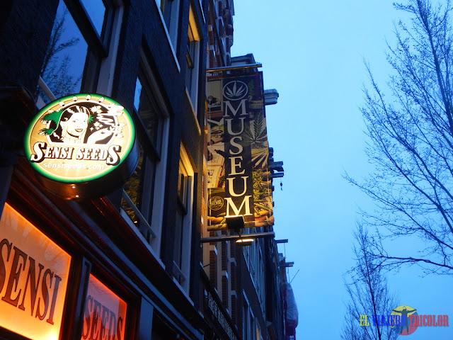 Museo del cannabis en Amsterdam