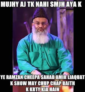 funny pics - amir liaquat show