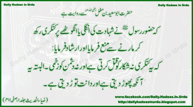 Hadees In Urdu Hazrat Ali As Islamic Wallpapers