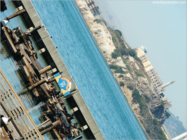 Isla de Alcatraz y el Pier 39 de San Francisco