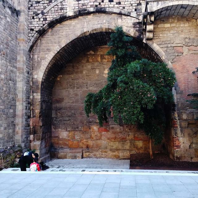 barcelone,quartier-gotique,Barrio Gotico,boire,gin,espagne,le-meilleur,amateurs-de-gin,voyage,madame-gin,blog