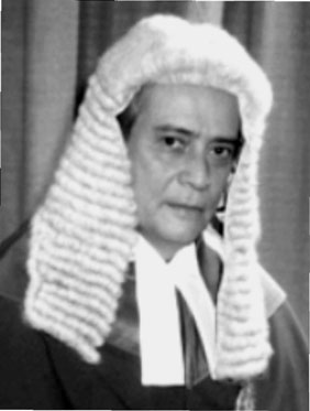 Image result for sir george souyave
