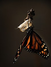 Coronation of a Monarch