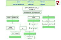 http://www.ceipjuanherreraalcausa.es/Recursosdidacticos/CUARTO/datos/04_Cmedio/datos/03rdi/ud04/02.htm