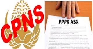 Rekrutmen PPPK Bagi Tenaga Honorer Lewat Jalur Khusus