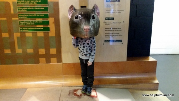 Rat boy - Eureka