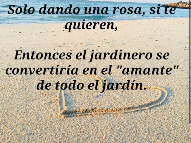Frases Para Enamorar A Mi Novia Que Esta Enojada Spaines Amor
