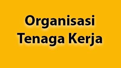 Model Organisasi Tenaga Kerja di Indonesia