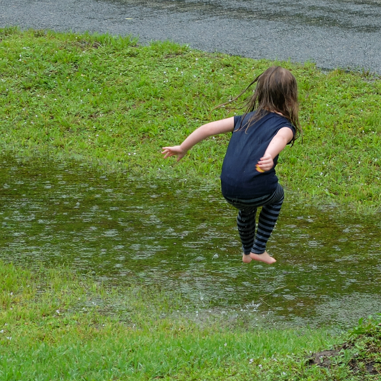 Sweet Turtle Soup - playing in the rain showers