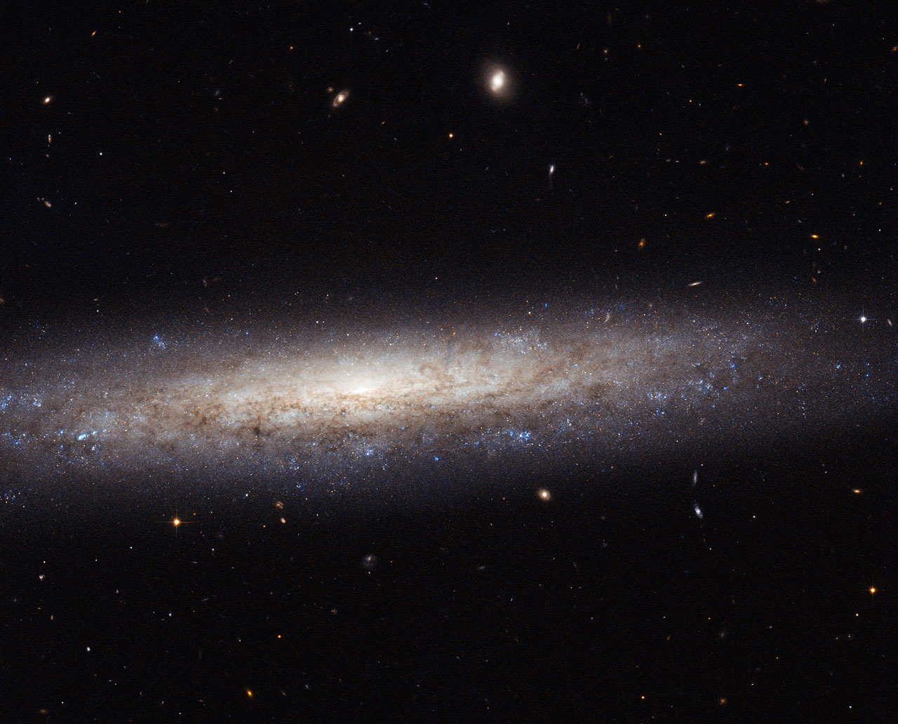 Hubble Catches a Dusty Spiral in Virgo Hubble Catches a Dusty Spiral in Virgo   This magnificent new image taken with the NASA/ESA Hubble Space Telescope shows the edge-on spiral galaxy NGC 4206, located about 70 million light-years away from Earth in the constellation of Virgo.  Captured here are vast streaks of dust, some of which are obscuring the central bulge, which can just be made out in the center of the galaxy. Towards the edges of the galaxy, the scattered clumps, which appear blue in this image, mark areas where stars are being born. The bulge, on the other hand, is composed mostly of much older, redder stars, and very little star formation takes place.  NGC 4206 was imaged as part of a Hubble snapshot survey of nearby edge-on spiral galaxies to measure the effect that the material between the stars — known as the interstellar medium — has on light as it travels through it. Using its Advanced Camera for Surveys, Hubble can reveal information about the dusty material and hydrogen gas in the cold parts of the interstellar medium. Astronomers are then able to map the absorption and scattering of light by the material — an effect known as extinction — which causes objects to appear redder to us, the observers.  NGC 4206 is visible with most moderate amateur telescopes at 13th magnitude. It was discovered by Hanoverian-born British astronomer, William Herschel on April 17, 1784.  Image Credit: ESA/Hubble & NASA, Acknowledgement: Nick Rose Explanation from: http://www.nasa.gov/content/goddard/hubble-catches-a-dusty-spiral-in-virgo/