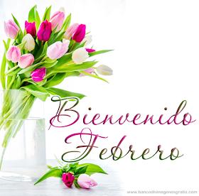 Frases Hermosas Eloisa Bienvenido Febrero 1