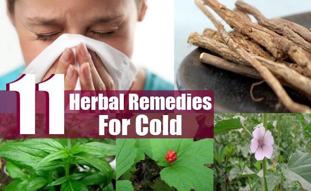 10 اعشاب لعلاج نزلة البرد