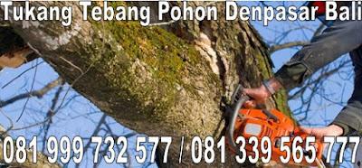 tukang jasa tebang pohon Denpasar Bali termurah