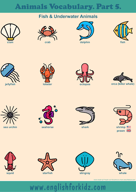 Sea animals vocabulary to learn English – printable ESL worksheets