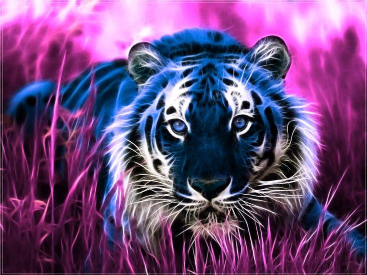 Tigre 3d 1920x1080 fonds d 39 cran hd for Photo fond ecran swag