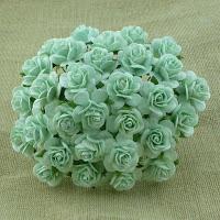 https://www.essy-floresy.pl/pl/c/kwiaty-gotowe/3/1/default/1/f_producer_27/1
