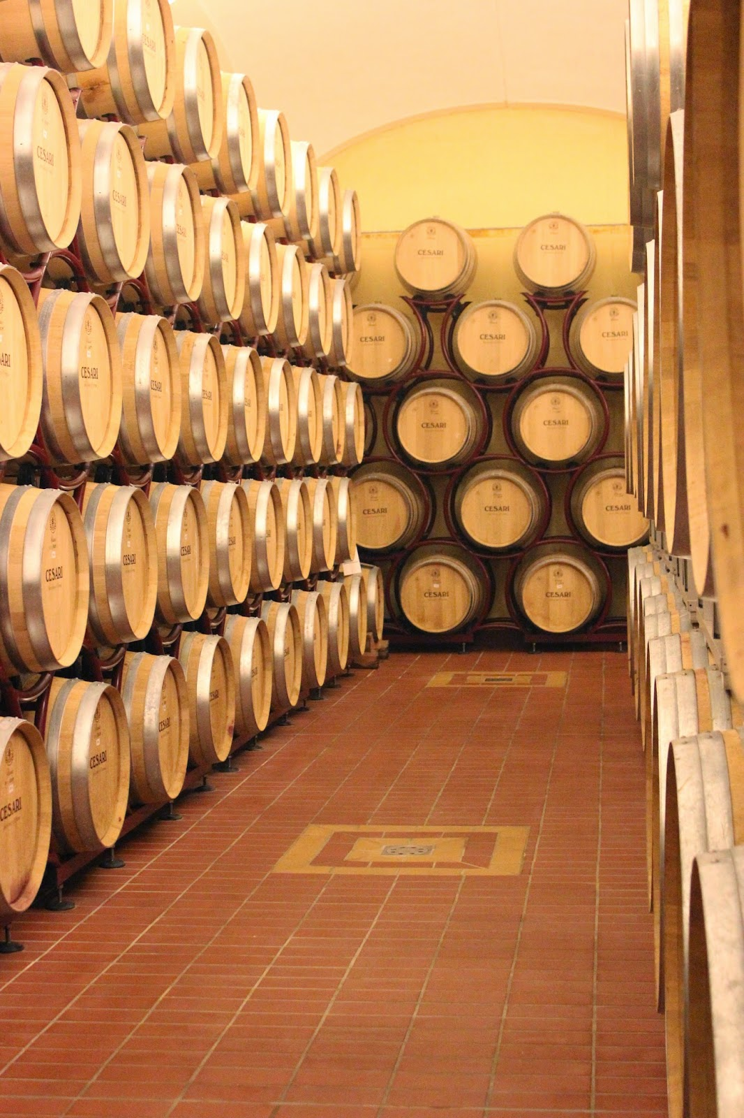 Wine cellar of Cesari winery