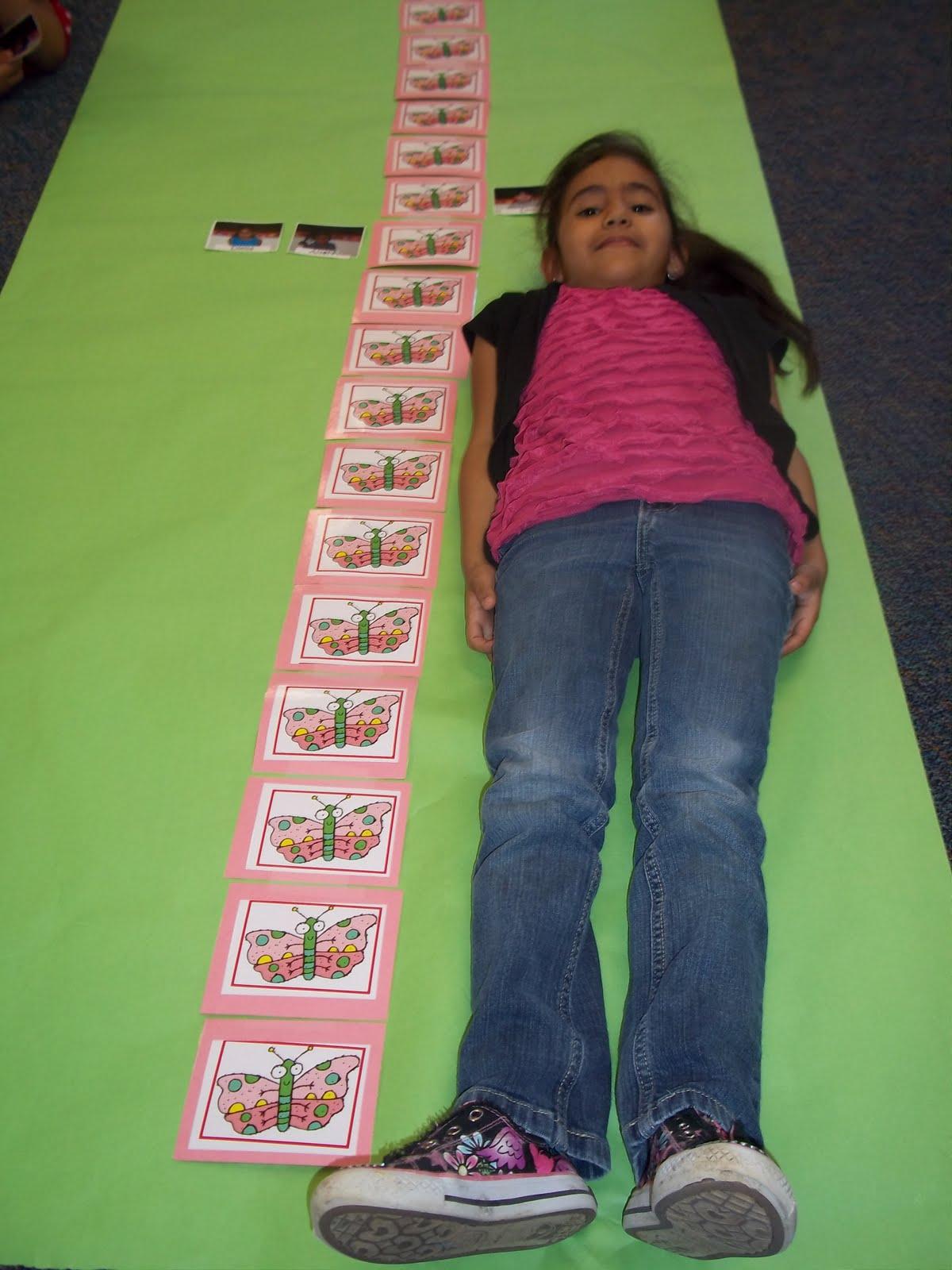 Mrs Wood S Kindergarten Class Butterfly Measurement