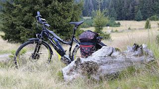 Natuur achtergrond met fiets in de zomer.