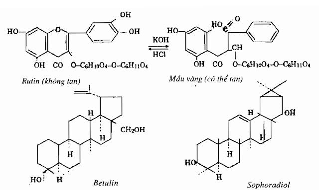 Thành phần hóa học Hoa Hòe - Sophora japonica - Nguyên liệu làm thuốc Hạ Huyết Áp