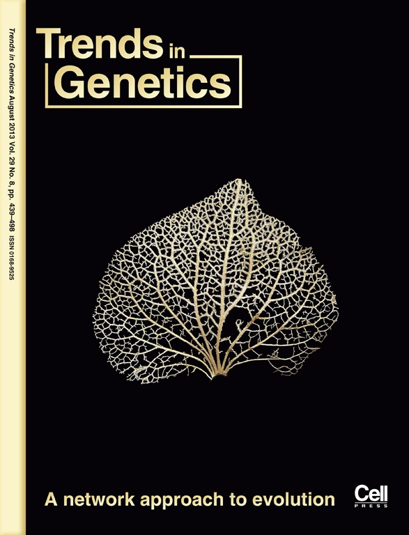 The Genealogical World of Phylogenetic Networks: July 2013