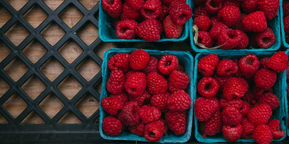 red raspberries in blue paper boxes