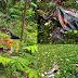 Korban Hanyut di Batujajar, ditemukan di Waduk Saguling
