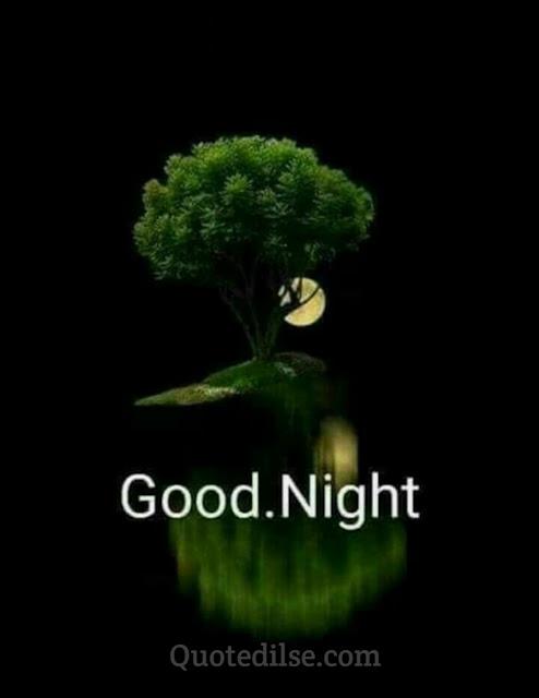 funny good night status in hindi