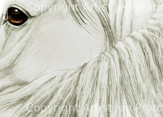 horse head drawings, small horse drawings, horse gifts