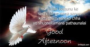 good afternoon sms hindi