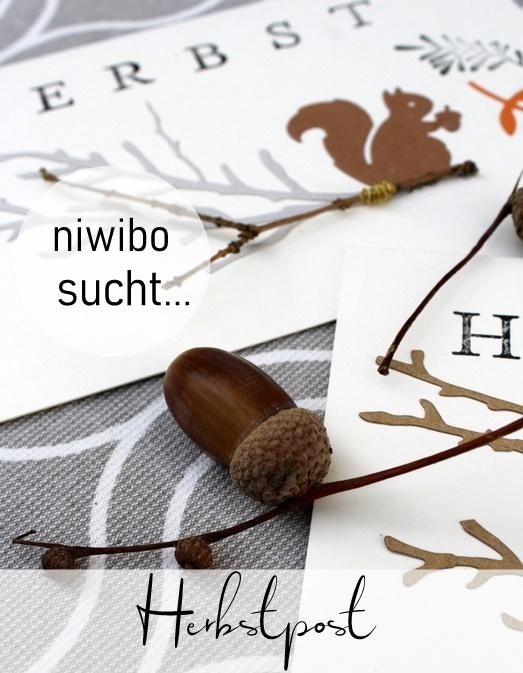 Niwibo sucht