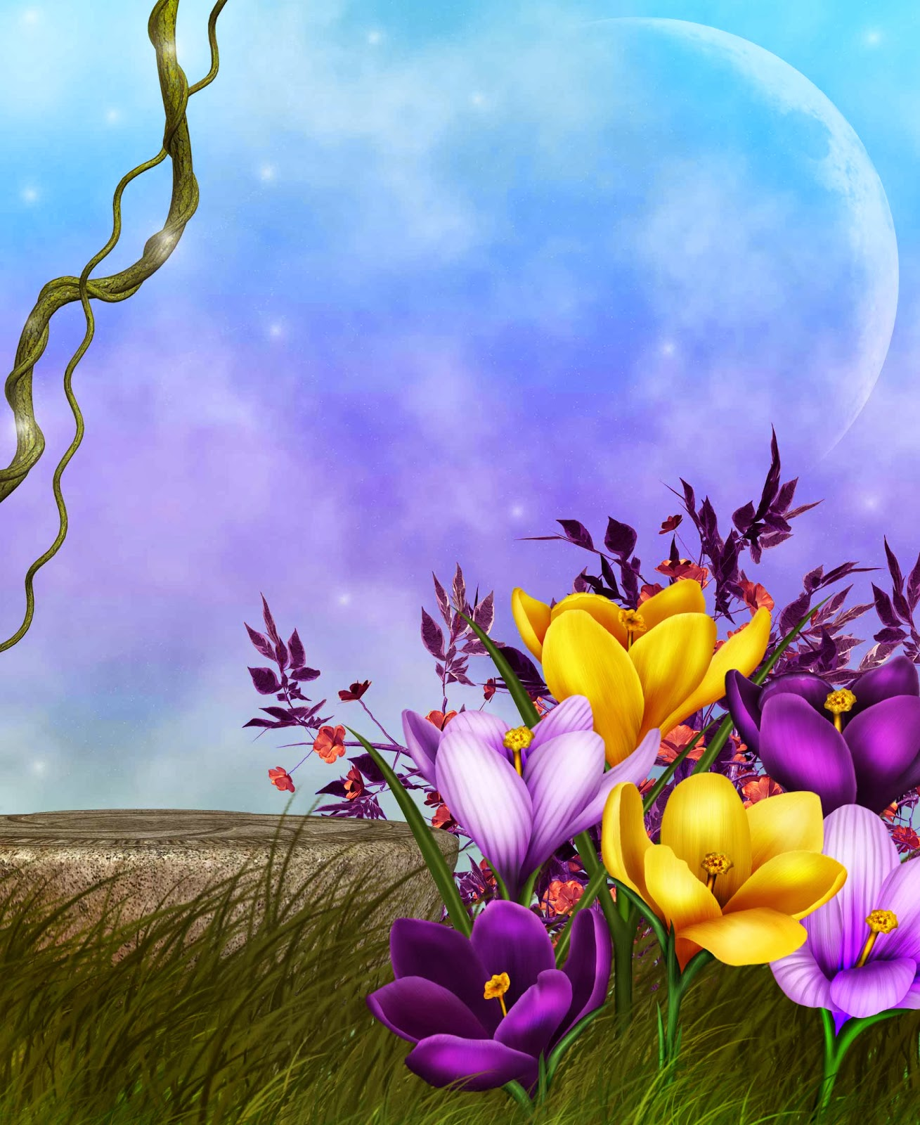 Beautiful Floral Backgrounds In Jepg File Free Download