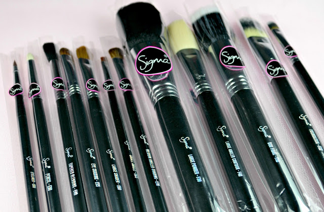 Image of the Sigma Essential 12 Piece Brush Kit with all brushes lined up