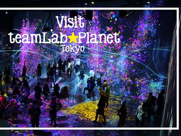 🗾 What to visit: teamLab Borderless in Odaiba, Tokyo