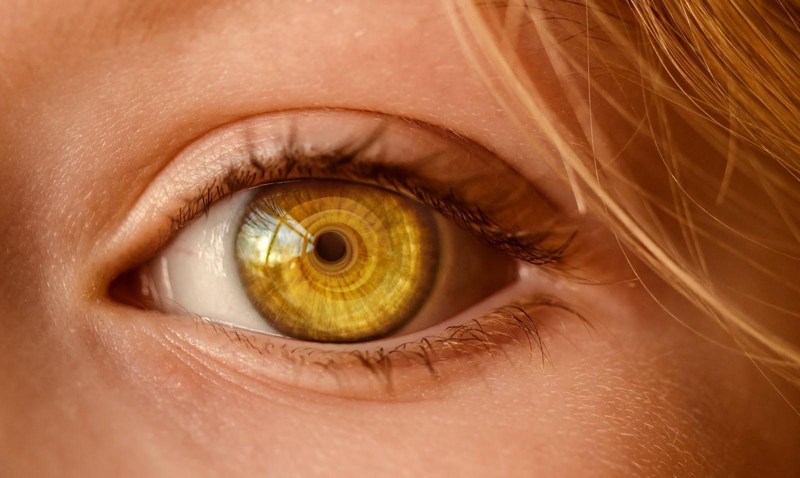 أطعمة تحافظ على صحة العينين
