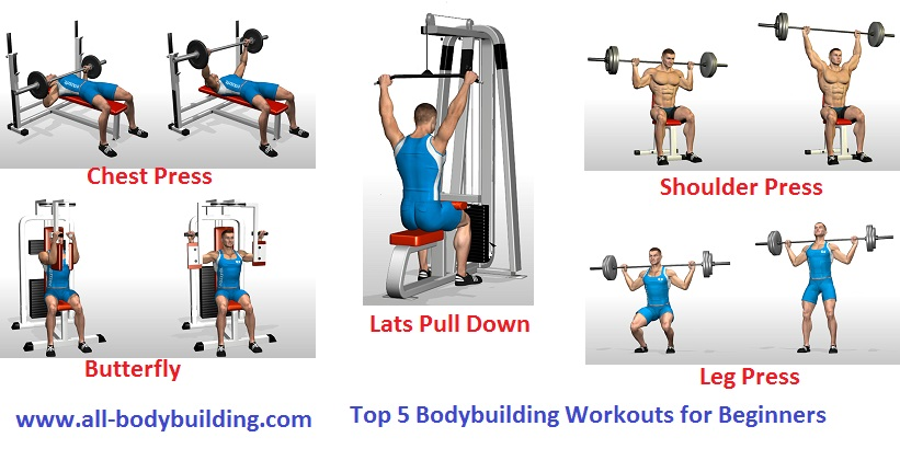 Top 5 Bodybuilding Workouts for Beginners - all