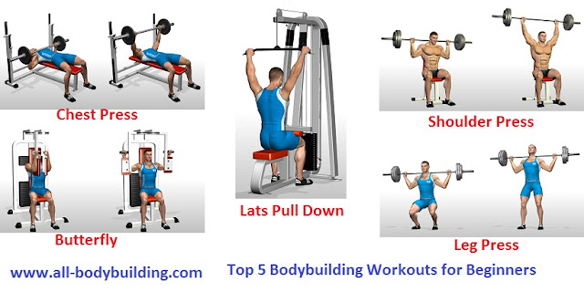 Top 5 Bodybuilding Workouts for Beginners