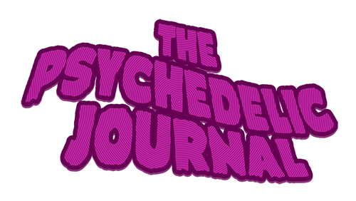 The Psychedelic Journal of Time Travel