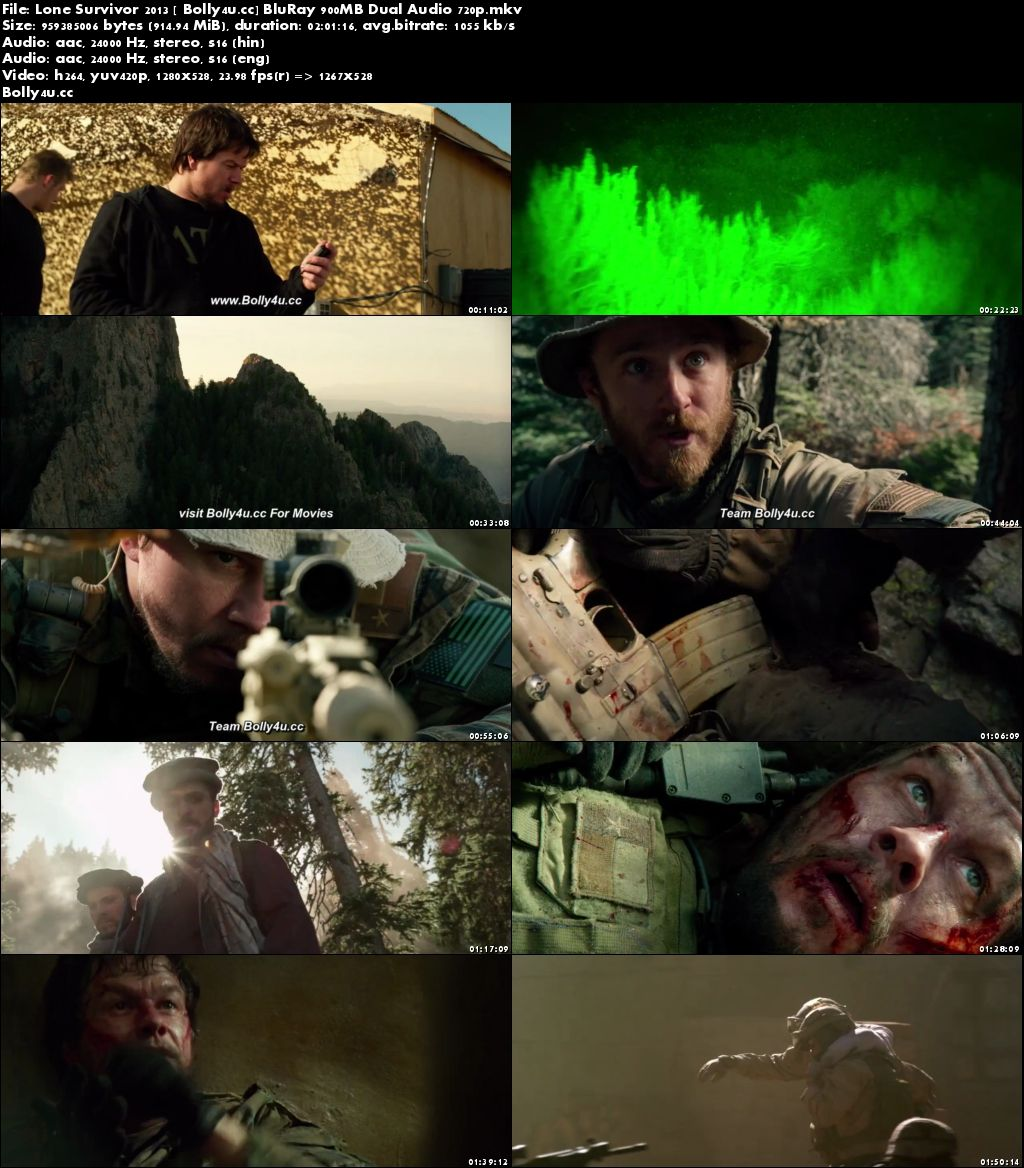 Lone Survivor 2013 BluRay 350MB Hindi Dual Audio 480p Download