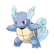 Deciding for 008 - Wartortle