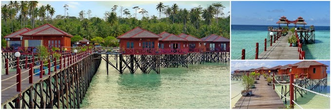 Uji Keberanian di Borneo Wild Adventure