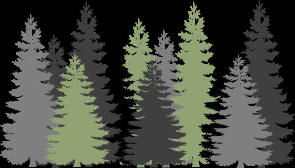 คำไวพจน์: ป่า