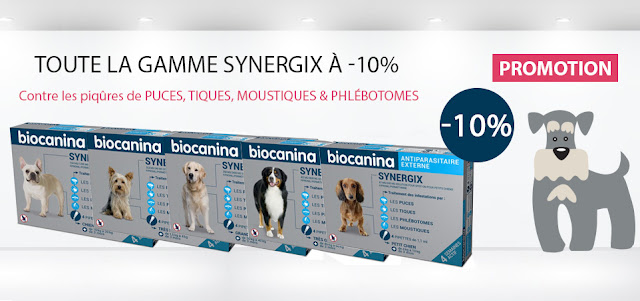 Promotion synergix chiens