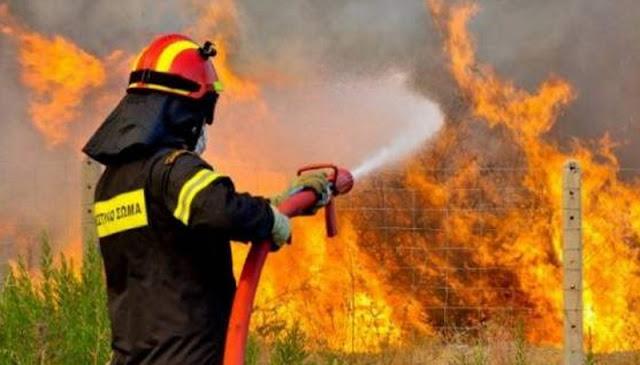 Πυροσβέστες, Πυροσβεστικό Σώμα, Αξιωματικός Πυροσβεστικής