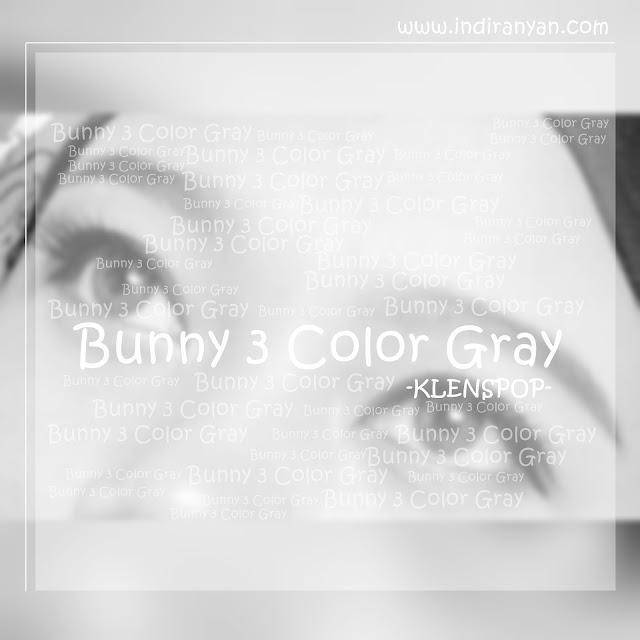 Bunny 3 Color Gray